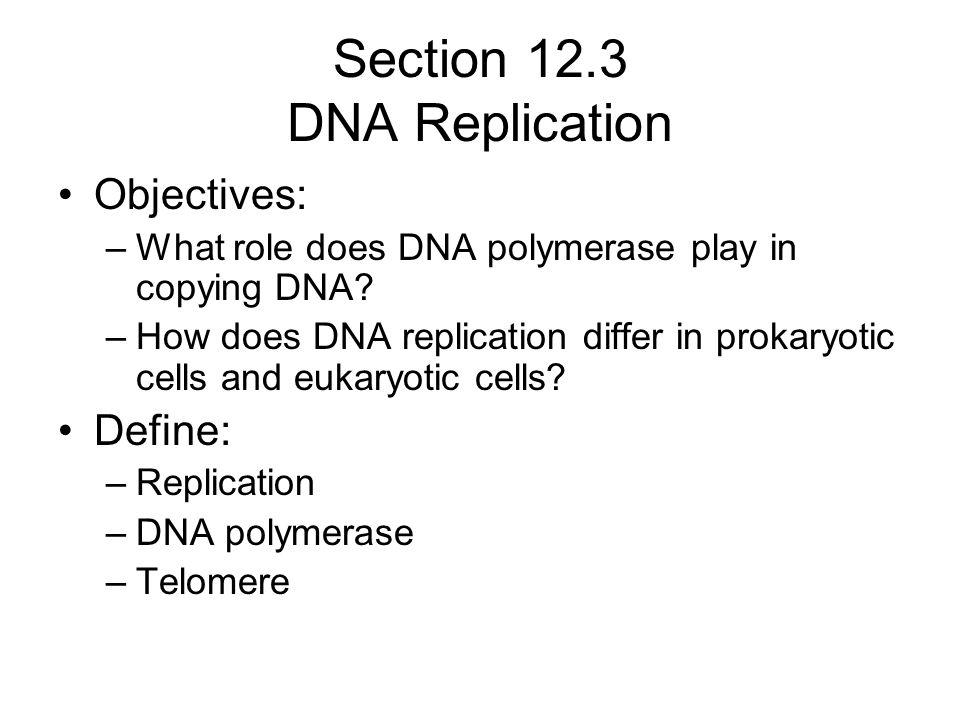 Section 12.3 DNA Replication