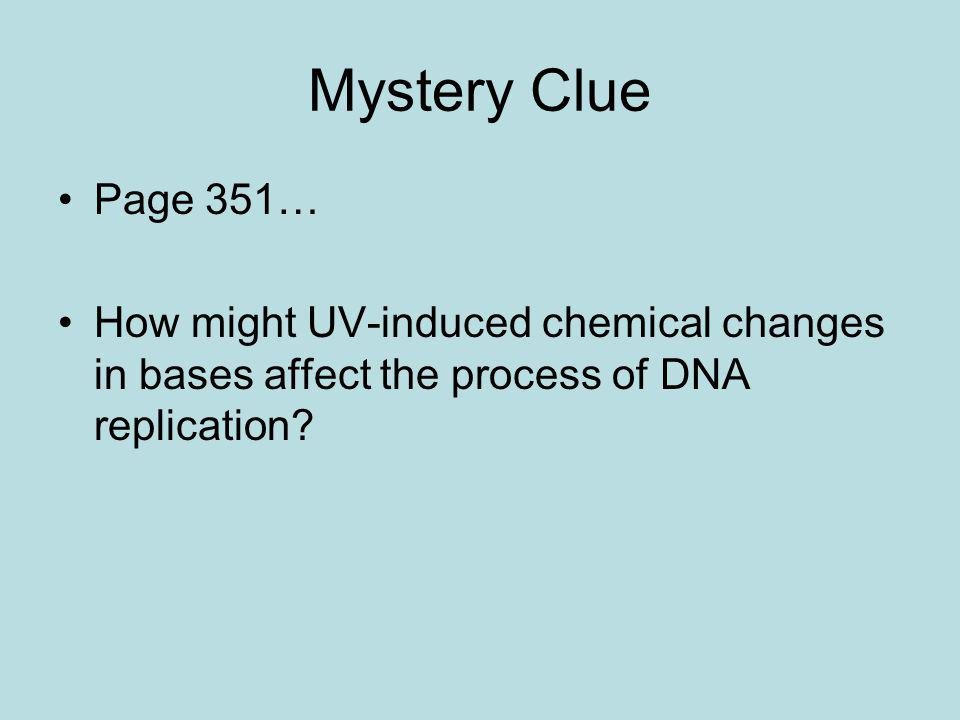 Mystery Clue Page 351… How might UV-induced chemical changes in bases affect the process of DNA replication