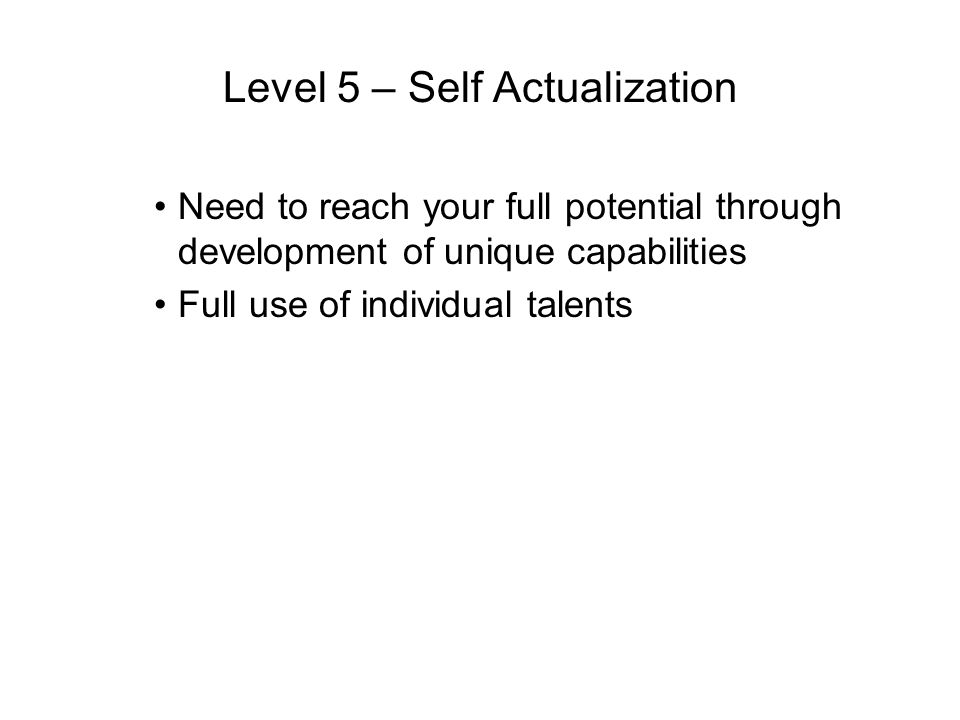 Level 5 – Self Actualization