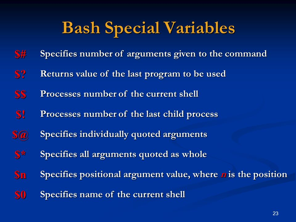 Bash Special Variables