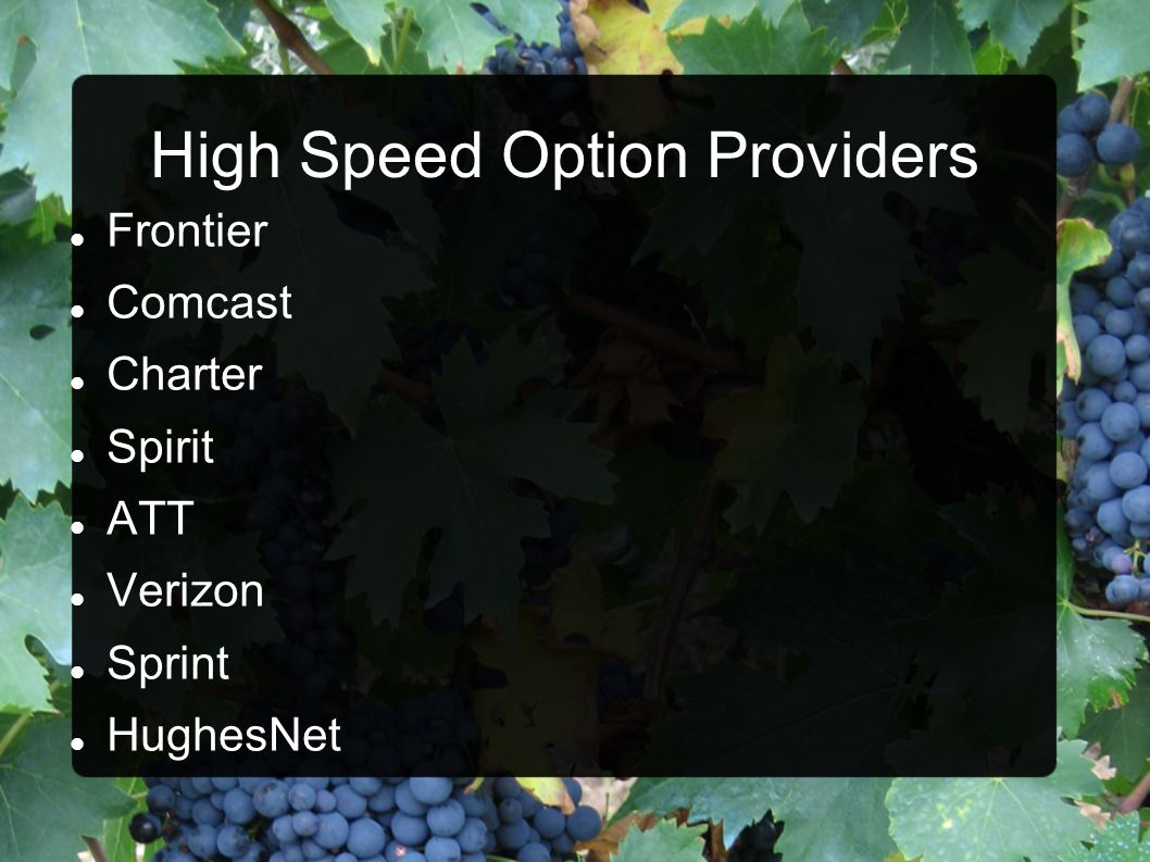 High Speed Option Providers
