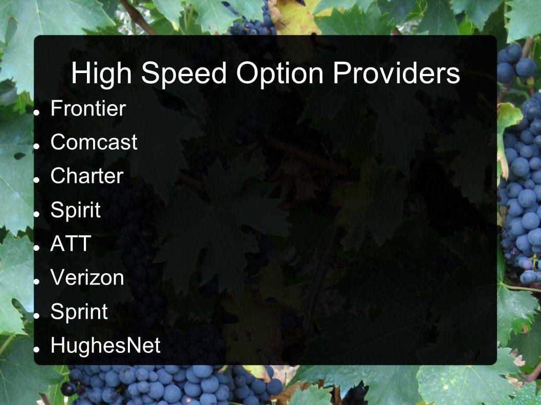 High Speed Option Providers
