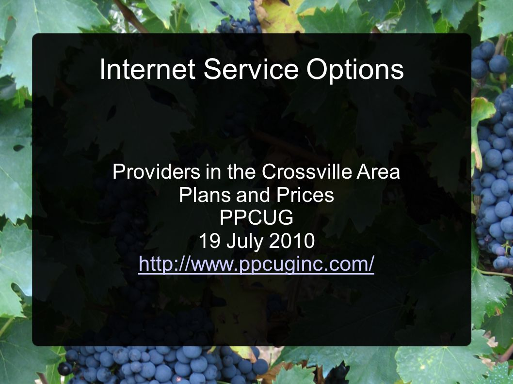 Internet Service Options