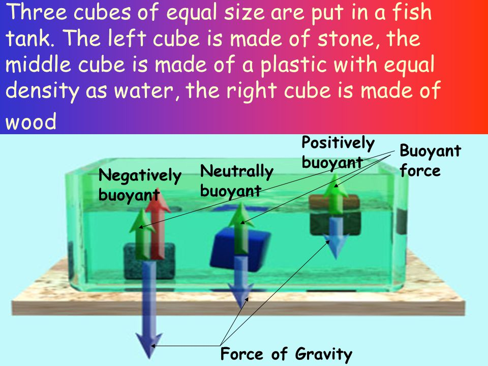 Three cubes of equal size are put in a fish tank