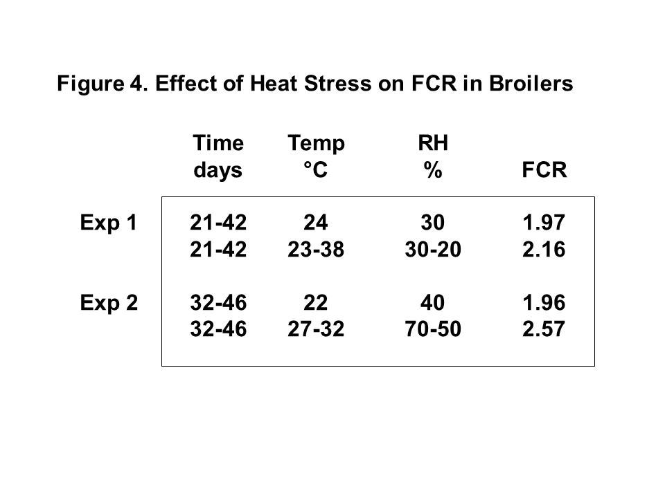 Figure 4. Effect of Heat Stress on FCR in Broilers
