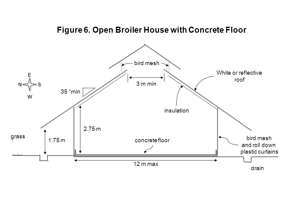 Figure 6. Open Broiler House with Concrete Floor