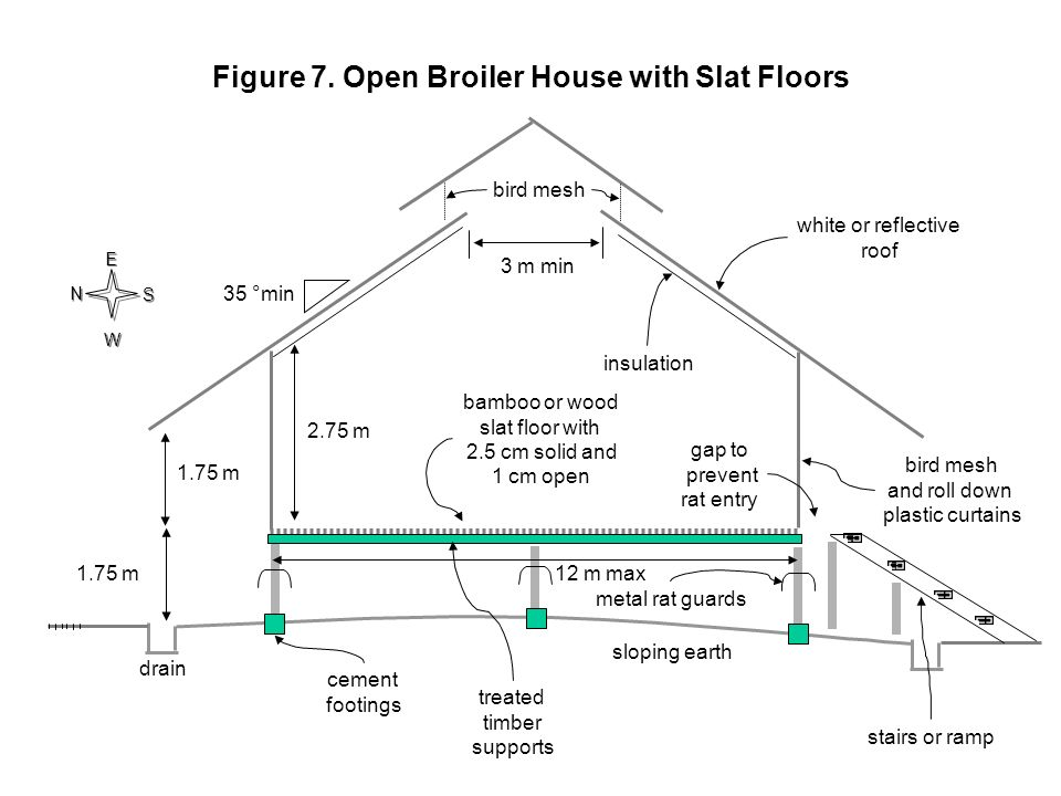 Figure 7. Open Broiler House with Slat Floors