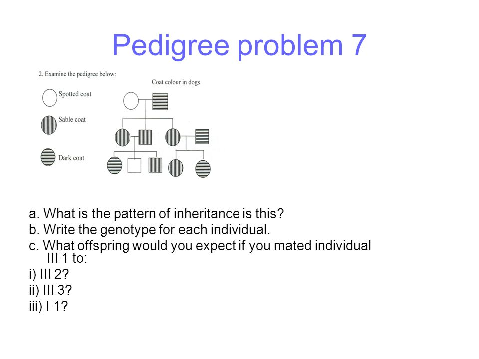 Pedigree problem 7 a. What is the pattern of inheritance is this