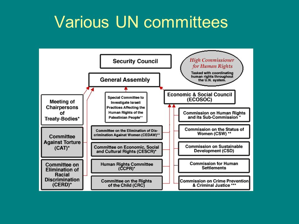 Various UN committees