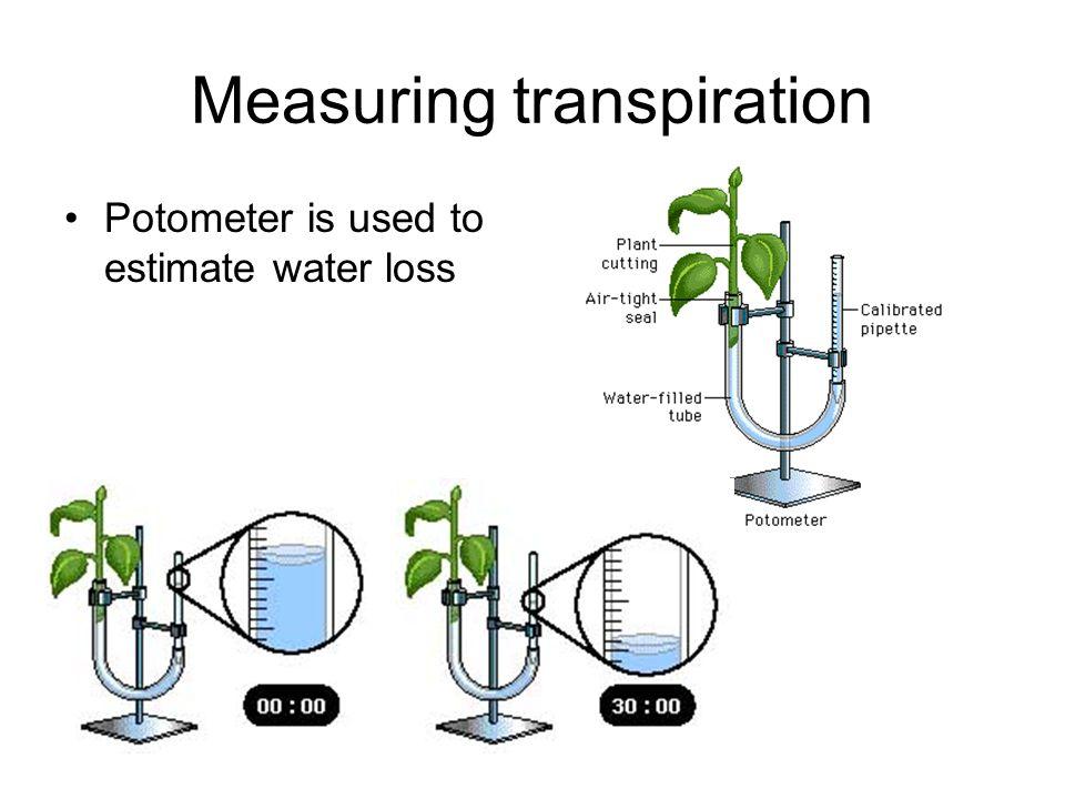 Measuring transpiration