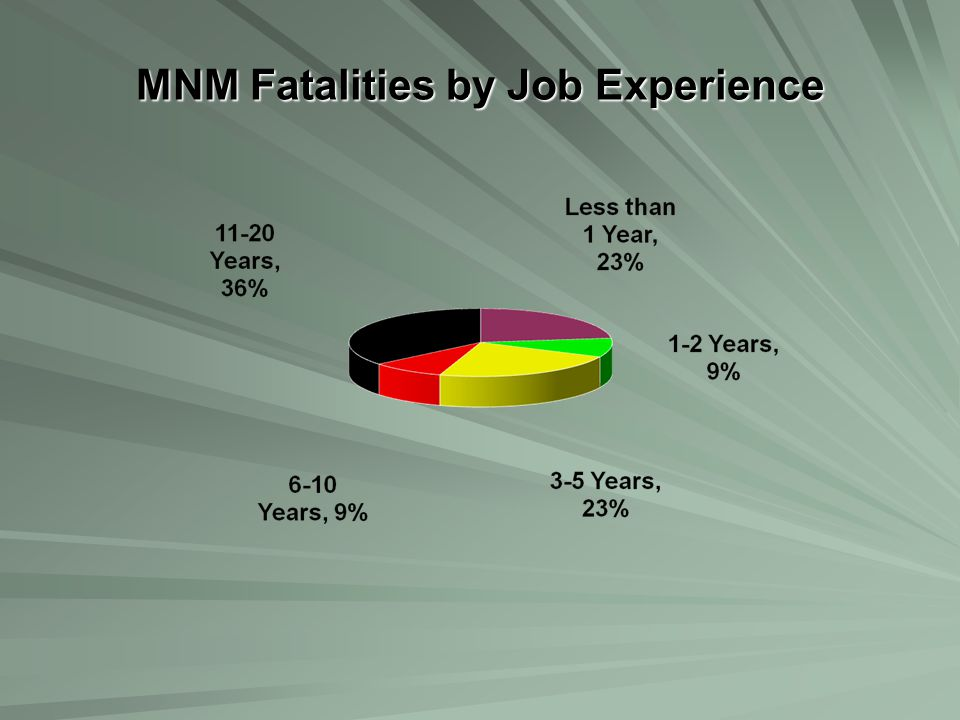 MNM Fatalities by Job Experience
