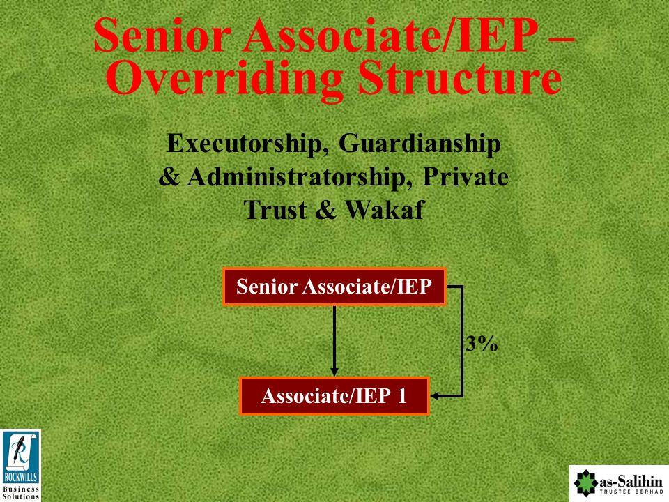 Senior Associate/IEP – Overriding Structure