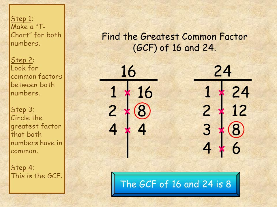 Find the Greatest Common Factor (GCF) of 16 and 24.