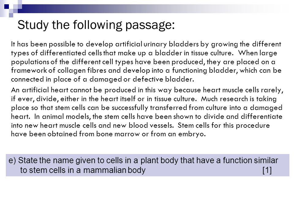 Study the following passage: