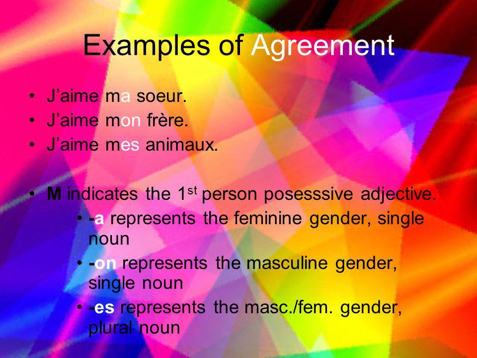 Examples of Agreement J'aime ma soeur. J'aime mon frère.