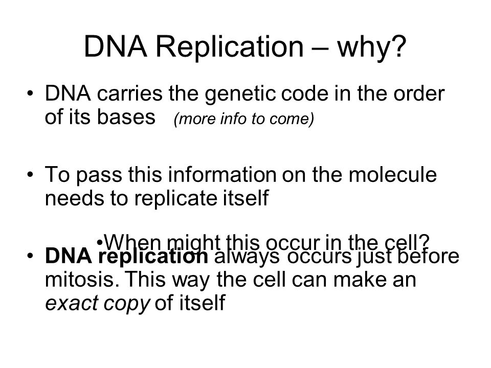 DNA Replication – why DNA carries the genetic code in the order of its bases (more info to come)