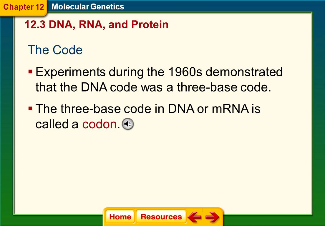 The three-base code in DNA or mRNA is called a codon.