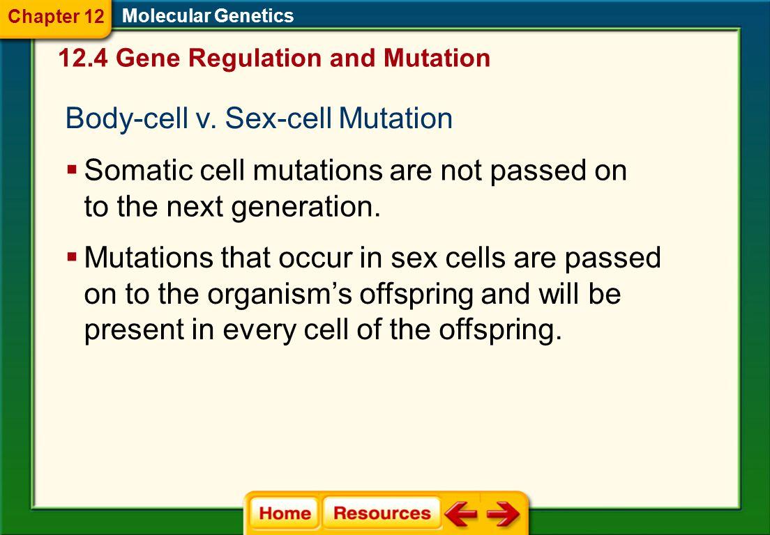 Body-cell v. Sex-cell Mutation