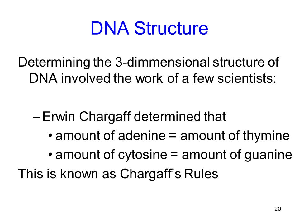 DNA Structure Determining the 3-dimmensional structure of DNA involved the work of a few scientists: