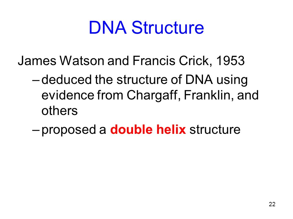 DNA Structure James Watson and Francis Crick, 1953