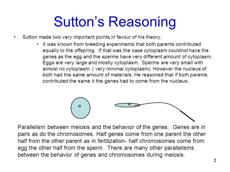 Sutton's Reasoning Sutton made two very important points in favour of his theory.