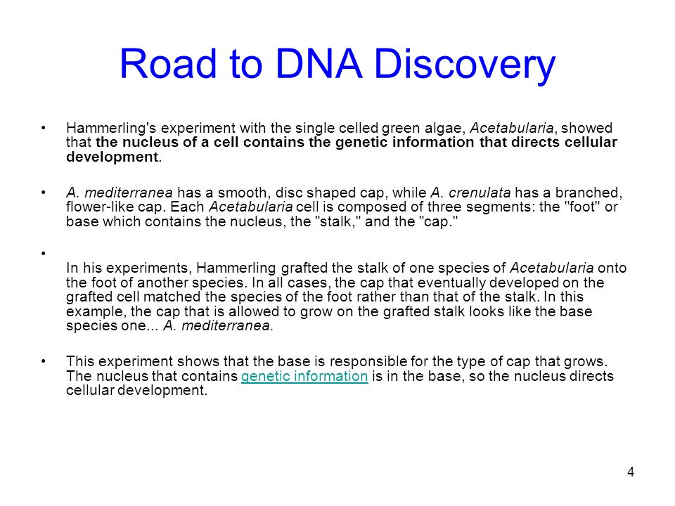 Road to DNA Discovery