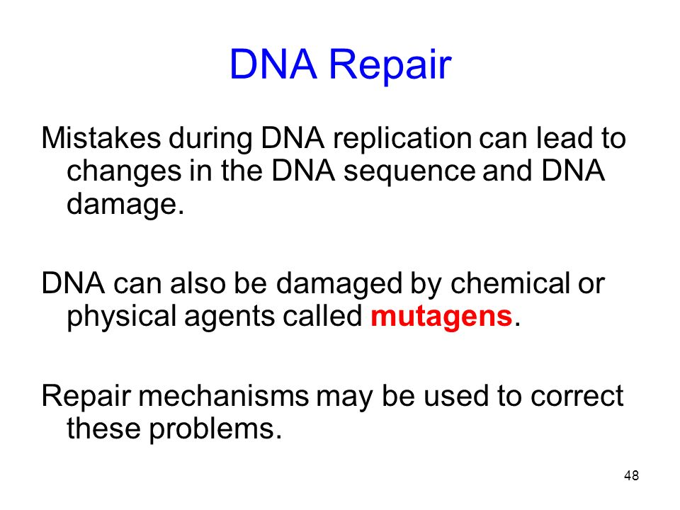 DNA Repair Mistakes during DNA replication can lead to changes in the DNA sequence and DNA damage.