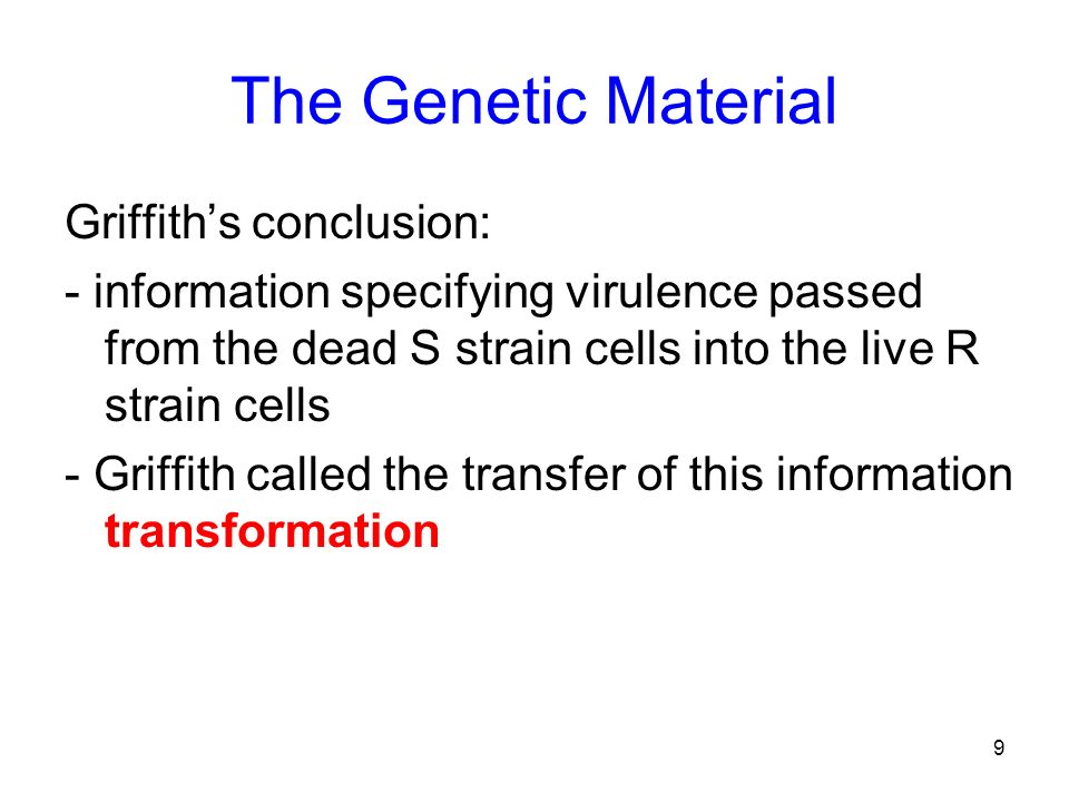 The Genetic Material Griffith's conclusion: