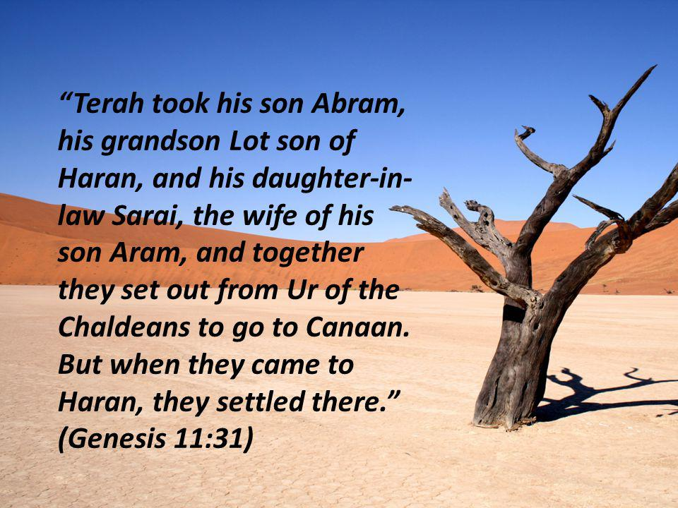 Terah took his son Abram, his grandson Lot son of Haran, and his daughter-in-law Sarai, the wife of his son Aram, and together they set out from Ur of the Chaldeans to go to Canaan.