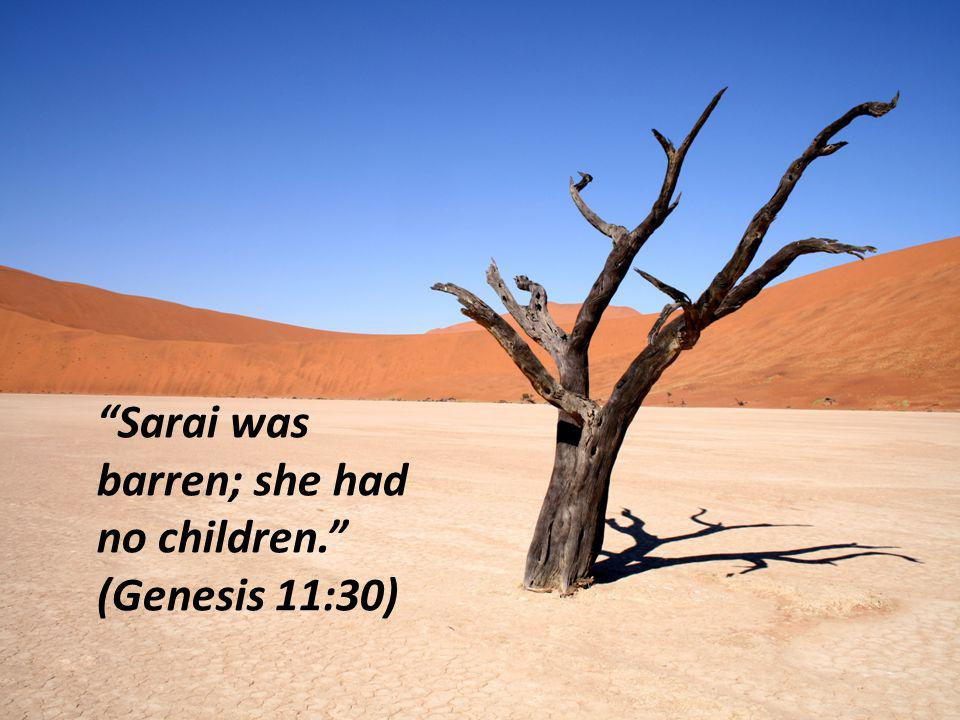 Sarai was barren; she had no children. (Genesis 11:30)