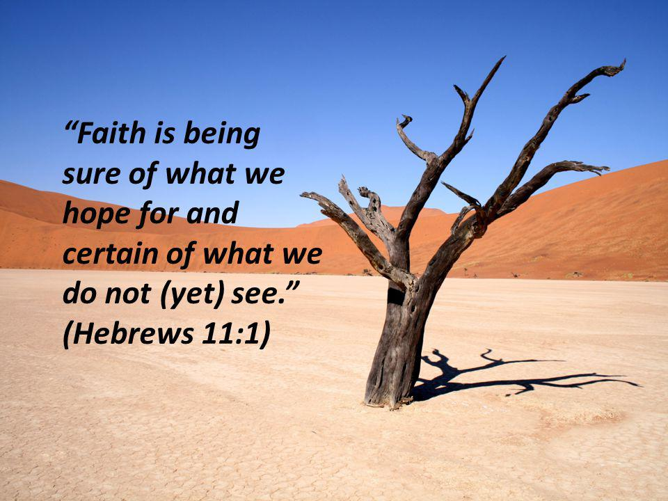 Faith is being sure of what we hope for and certain of what we do not (yet) see. (Hebrews 11:1)