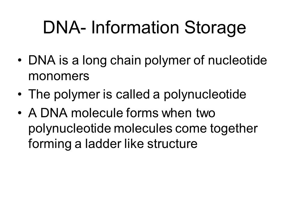 DNA- Information Storage
