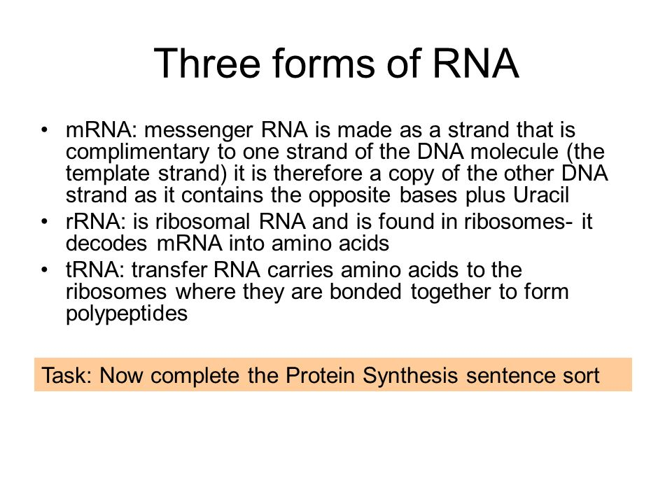 Three forms of RNA