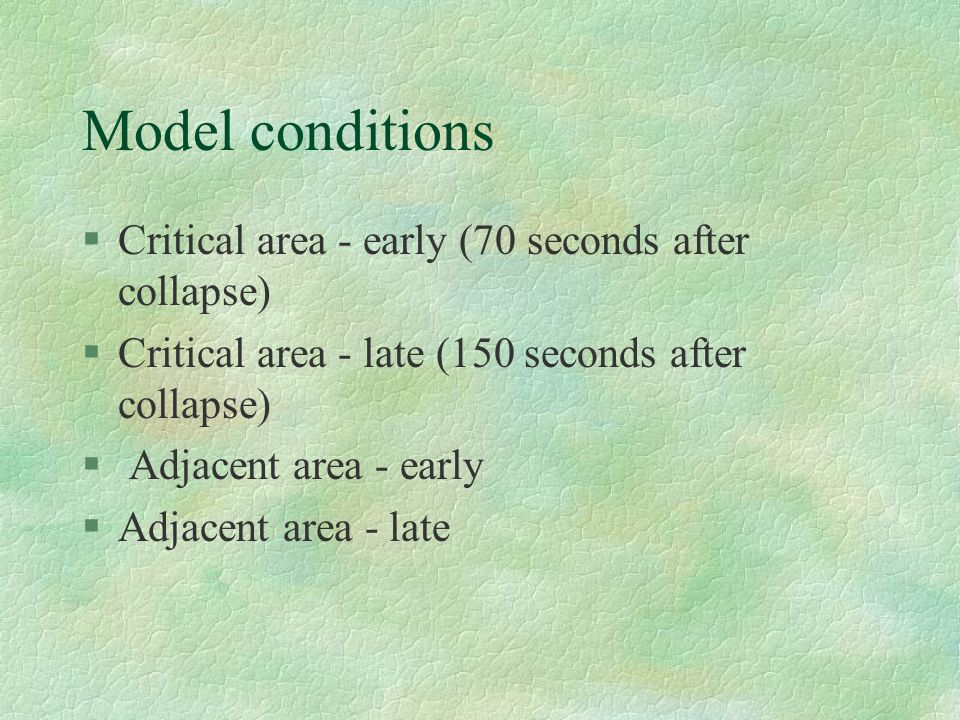 Model conditions Critical area - early (70 seconds after collapse)