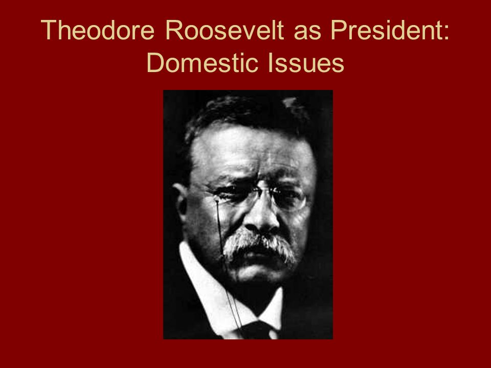 Theodore Roosevelt as President: Domestic Issues