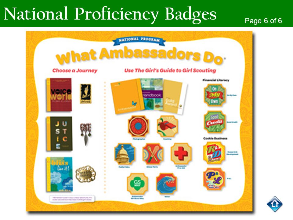 National Proficiency Badges