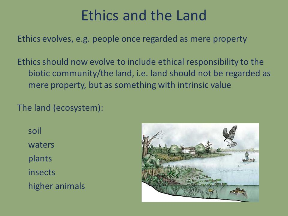 Ethics and the Land Ethics evolves, e.g. people once regarded as mere property.