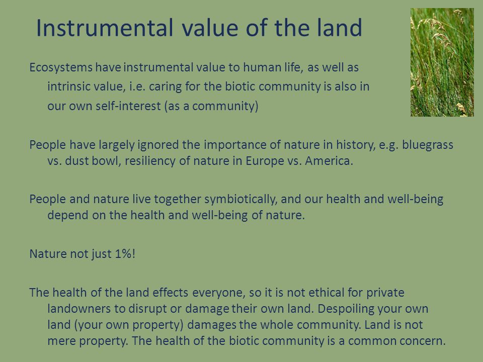Instrumental value of the land