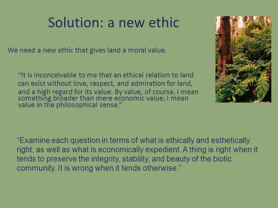 Solution: a new ethic