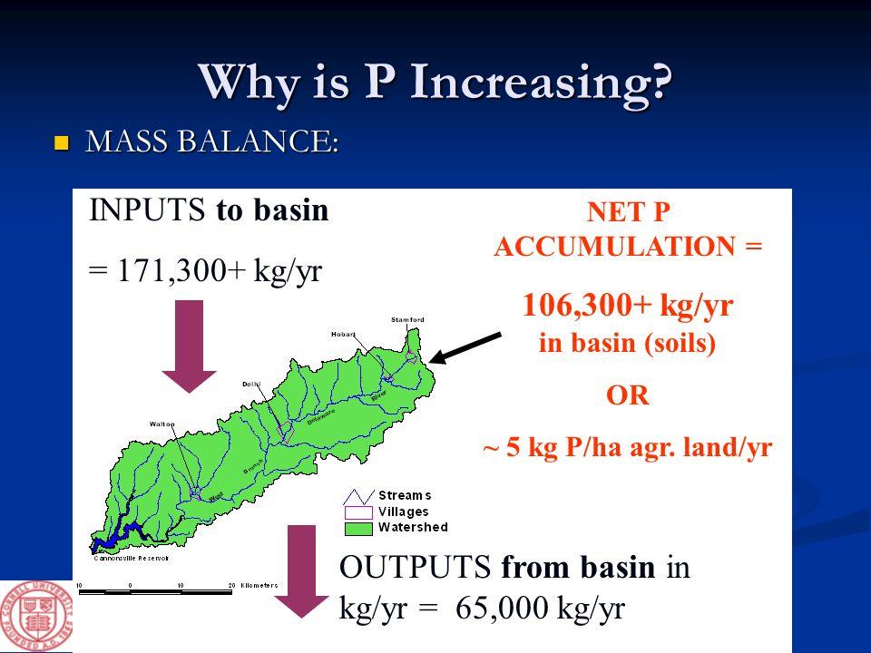 106,300+ kg/yr in basin (soils)