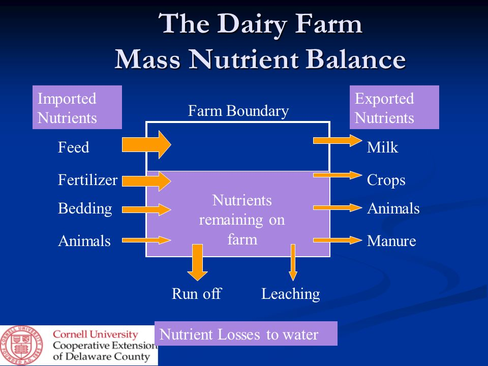 The Dairy Farm Mass Nutrient Balance