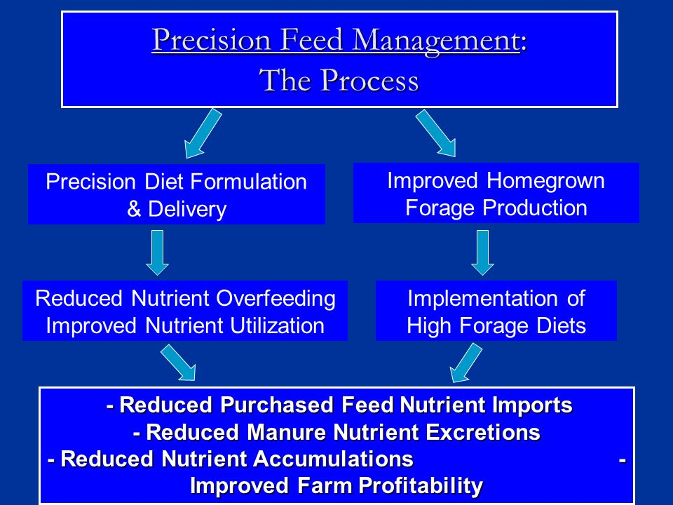 Precision Feed Management: The Process