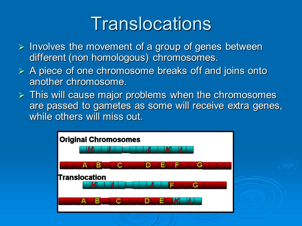 Translocations Involves the movement of a group of genes between different (non homologous) chromosomes.