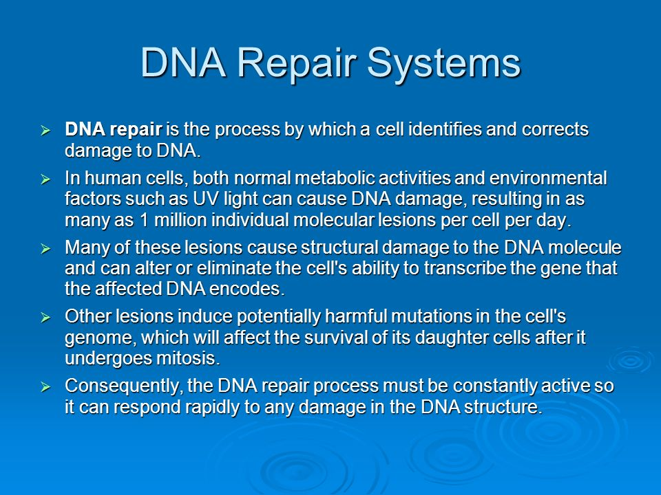 DNA Repair Systems DNA repair is the process by which a cell identifies and corrects damage to DNA.