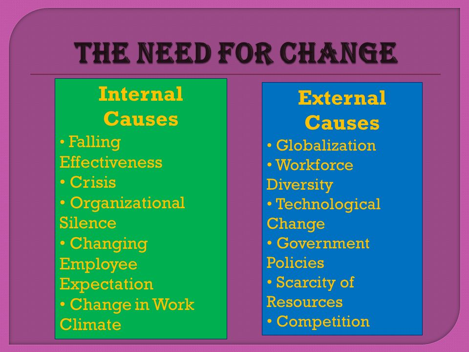 The Need for Change Internal Causes External Causes Crisis