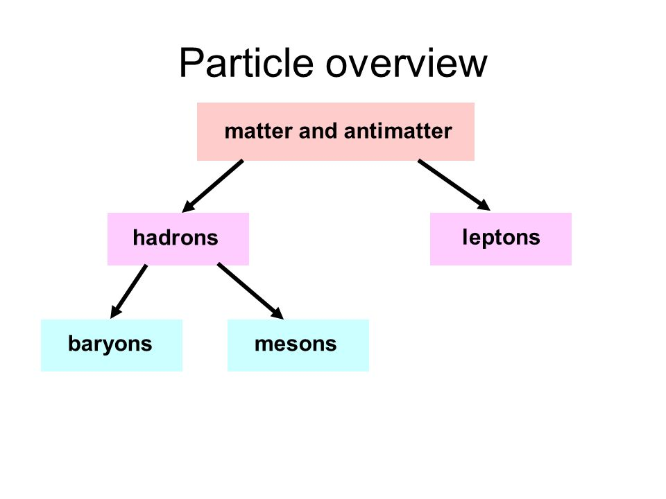 Particle overview matter and antimatter hadrons leptons baryons mesons