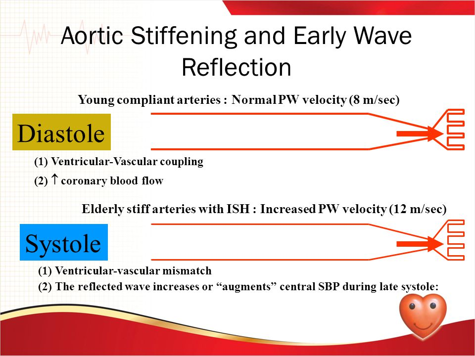 Aortic Stiffening and Early Wave Reflection