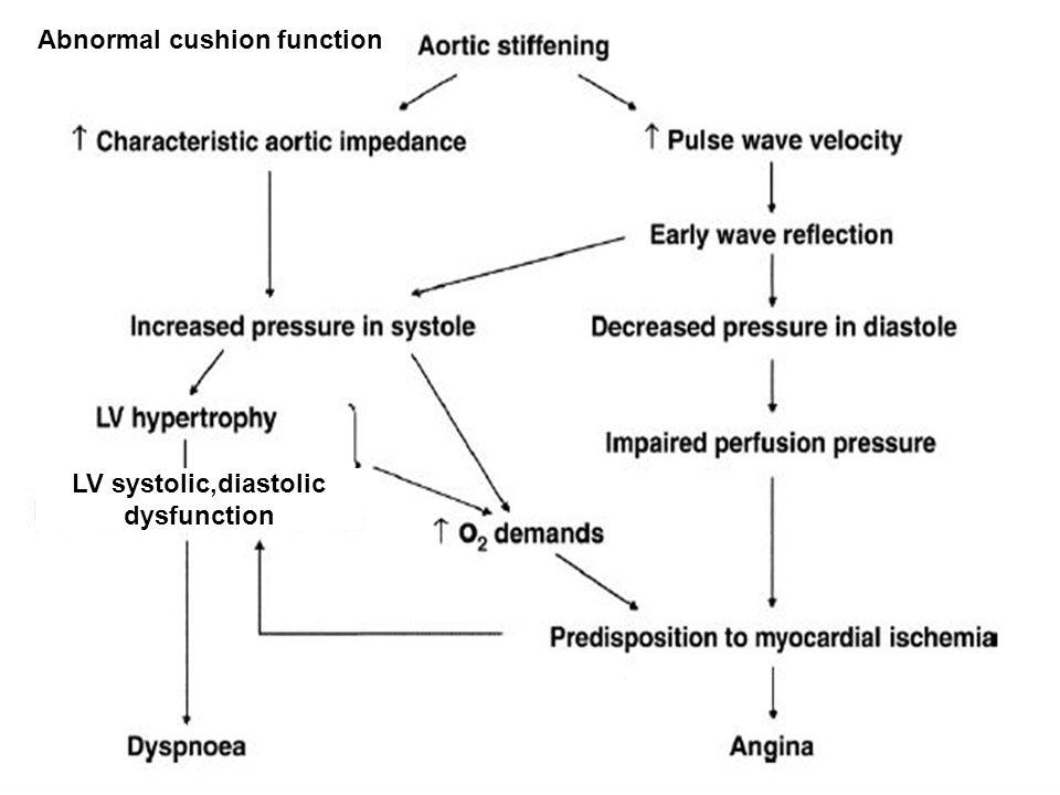 LV systolic,diastolic dysfunction