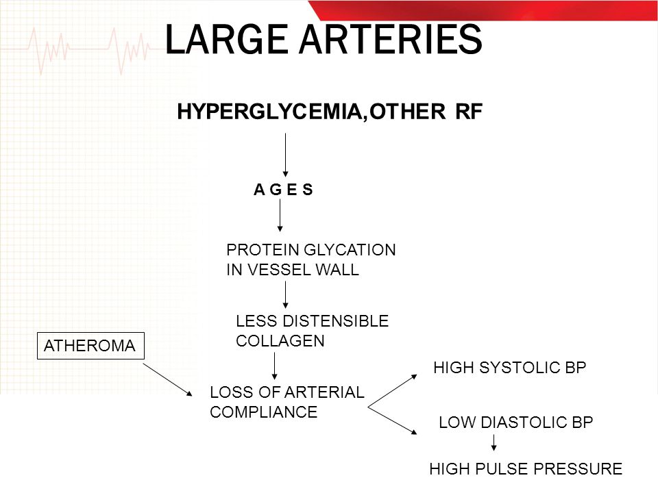 LARGE ARTERIES HYPERGLYCEMIA,OTHER RF A G E S PROTEIN GLYCATION