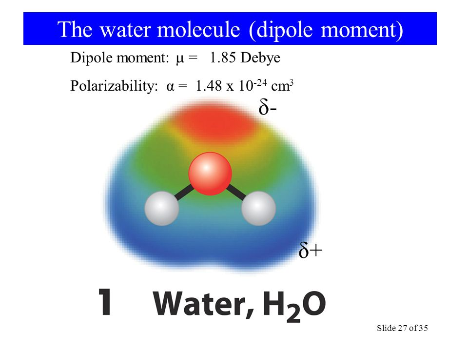 The water molecule (dipole moment)